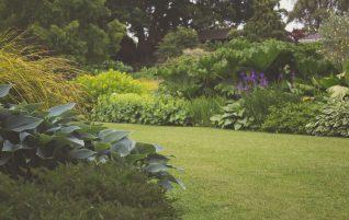 A kert nem percek alatt épül